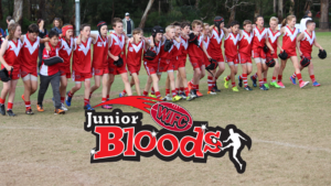 warrandyte junior football club